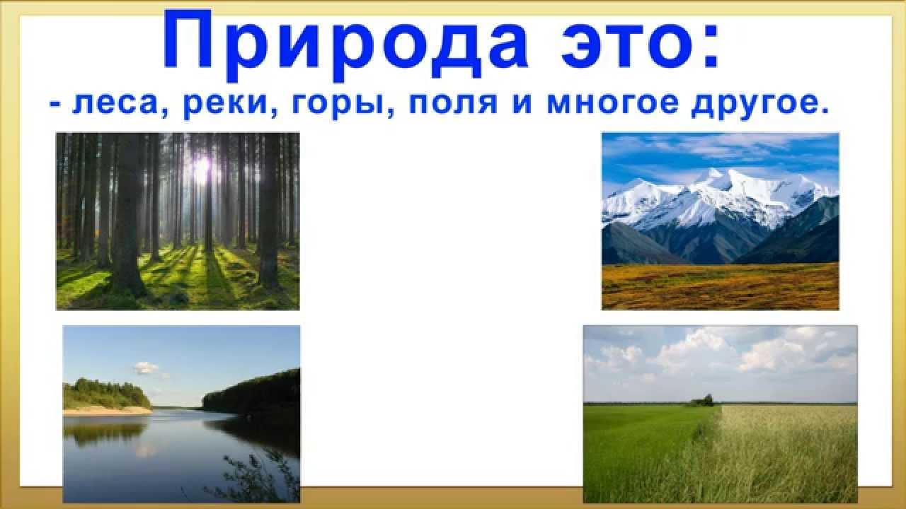 презентация на тему берегите природу Природа и её