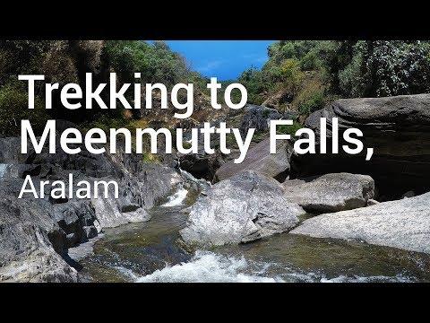 Trekking to Meenmutty Falls, Aralam