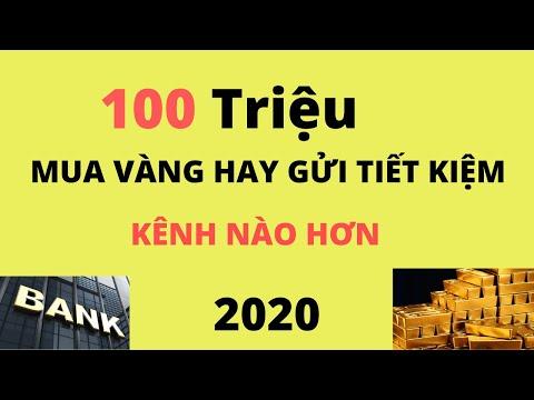 100 Triệu Năm 2020 Nên Mua Vàng Hay Gửi Tiết Kiệm Ngân Hàng?
