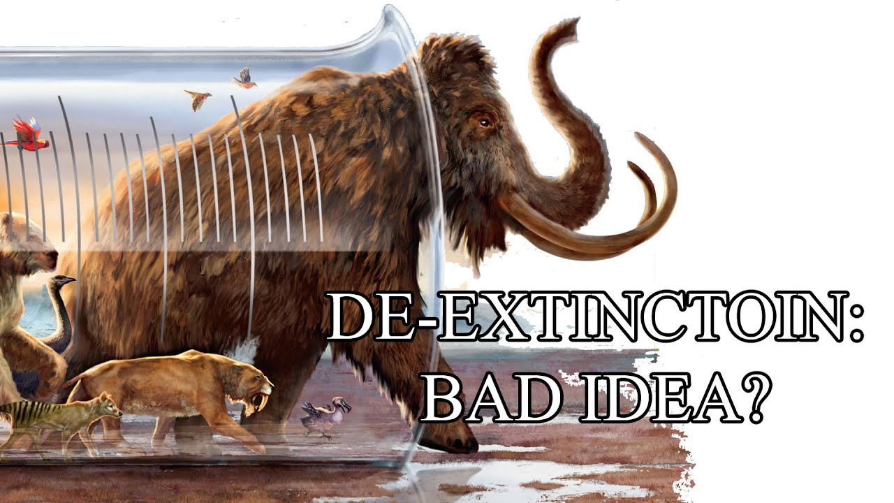 How to decide which extinct species we should resurrect