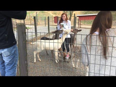 Smoky Mountain Deer Farm and Exotic Animal Petting Zoo