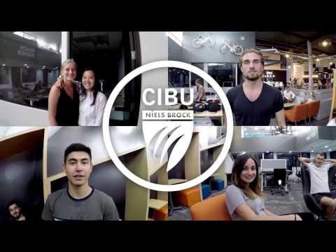 Niels Brock CIBU: Disrupting Business Education