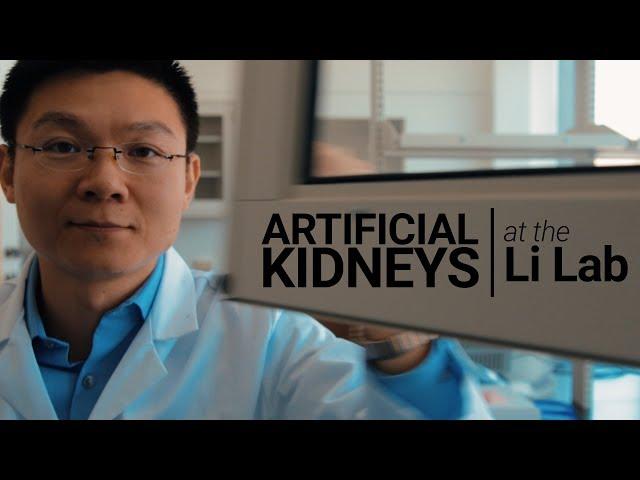 USC Stem Cell scientist Zhongwei Li is writing a recipe for a kidney