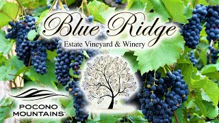 Blue Ridge Winery | Pocono Beverage Trail