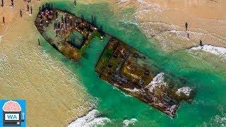 Mysteriöses Objekt wurde an der kalifornischen Küste nach einem Sturm entdeckt I Wissensautomat