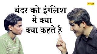 Funny Jokes ka khazana-बंदर को इंग्लिश में क्या कहते है -Jokes in hindi-Funny videos-Chutkule comedy