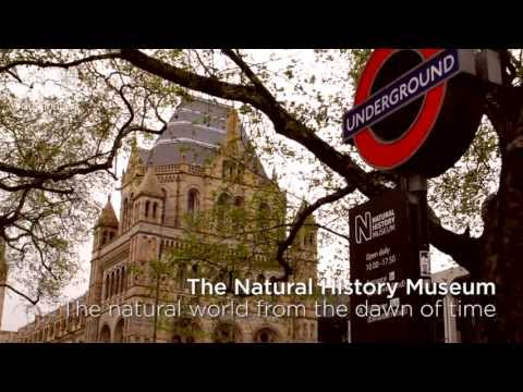 Free Museums - London