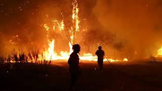 Volunteers Help to Battle Portuguese Wildfires