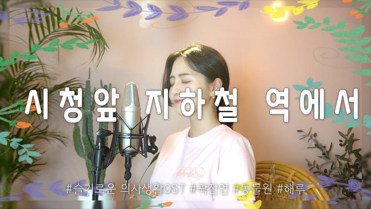 SUB)시청앞 지하철 역에서 - 곽진언/동물원(슬기로운의사생활OST)/COVER BY 해루 HERU