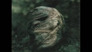 Album : Kurumeku haijin (1996)