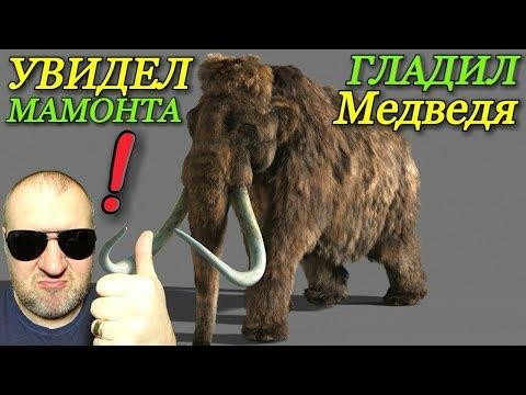 Покупка билетов Адлер - Пермь / Увидел мамонта / Погладил медведя