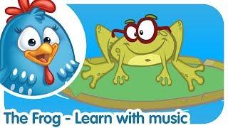 Learning Songs   Lottie Dottie Chicken UK   Nursery Rhymes For Kids