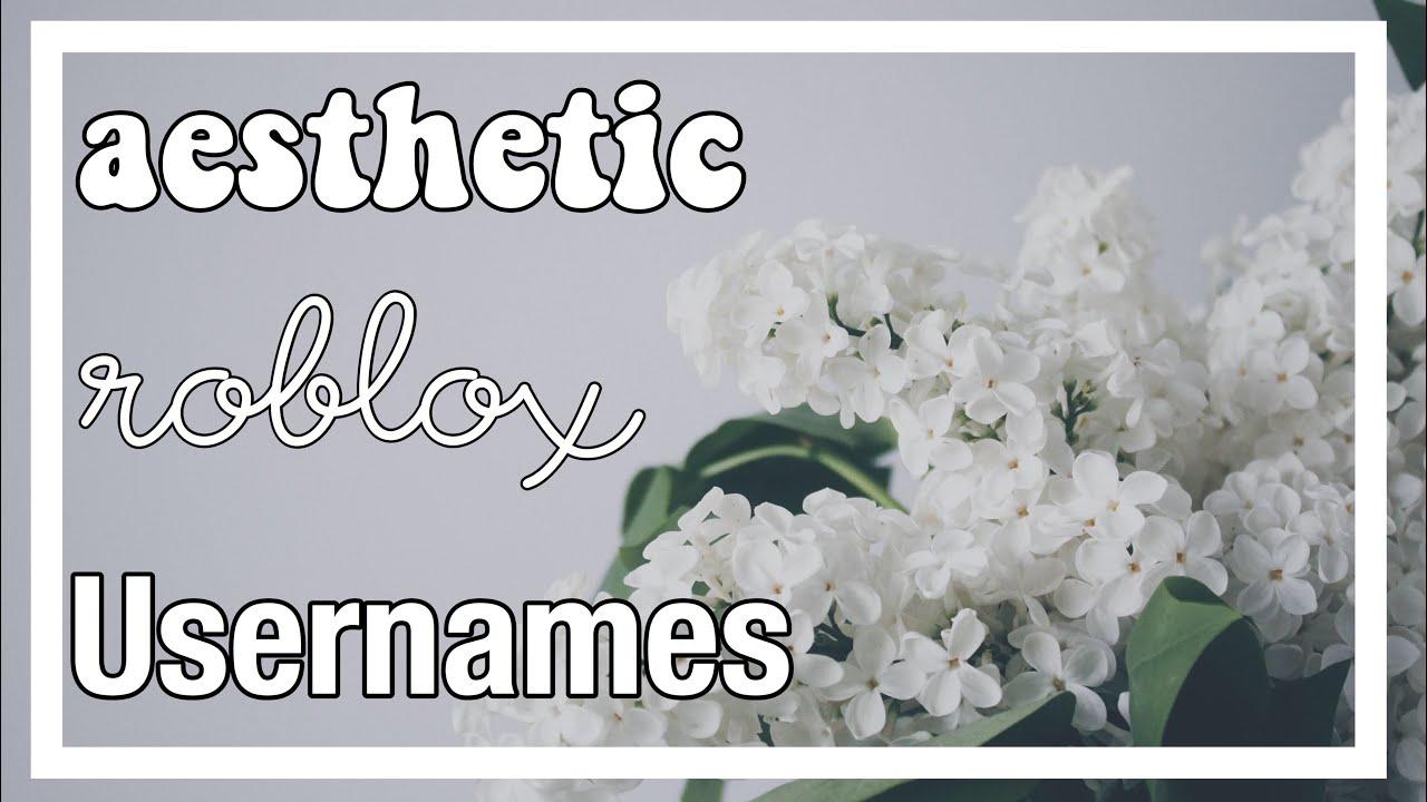 15 Aesthetic Roblox Usernames!♡