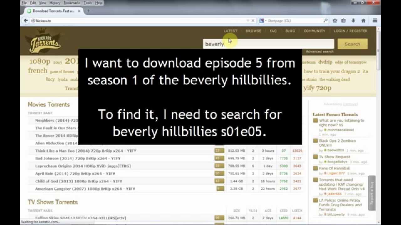 beverly hillbillies torrent