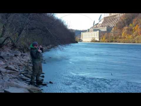 Mike's catch on the Niagara River