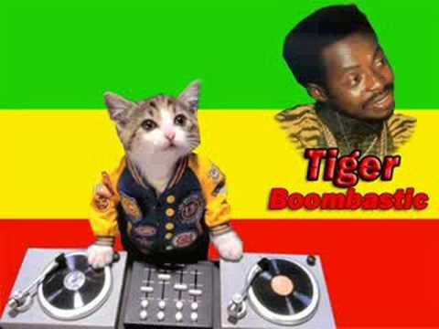 tiger-boombastic-devagne