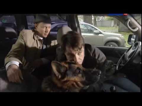 Пёс сезон 1,2,3 (2015) смотреть онлайн или скачать сериал
