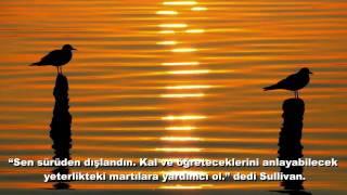 Martı - Itzhak Perlman - When the Rebbe Elimelech becomes so very merry