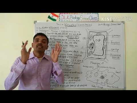 Structure Of Vacuole (Store House) In Hindi