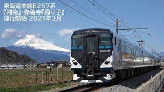 東海道本線E257系特急『湘南』・修善寺『踊り子』 2021年3月