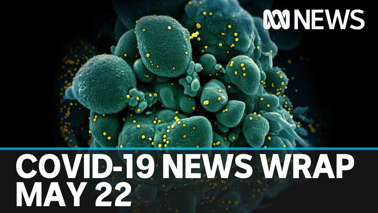 Coronavirus update: The latest COVID-19 news for Friday May 22   ABC News