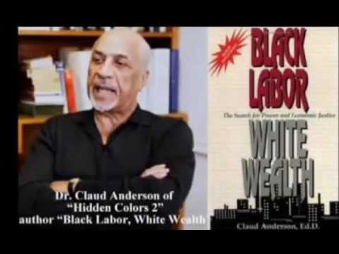 Dr  Claud Anderson There Is Power Within Yourself
