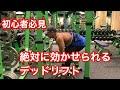 【筋トレ】初心者必見!!!デットリフト解説 の動画、YouTube動画。