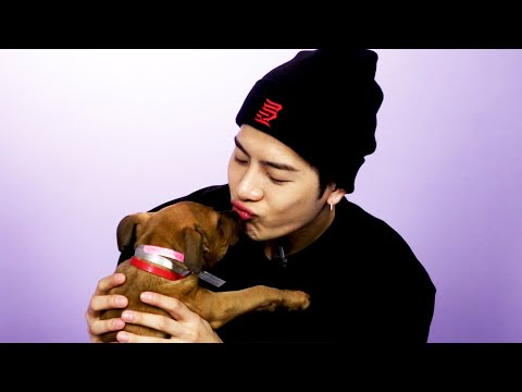 Jackson Wang Plays With Puppies While Answering Fan Questions