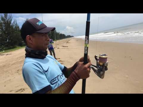 Surf fishing brunei