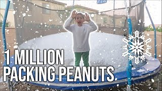 1,000,000 PACKING PEANUTS VS TRAMPOLINE!!!