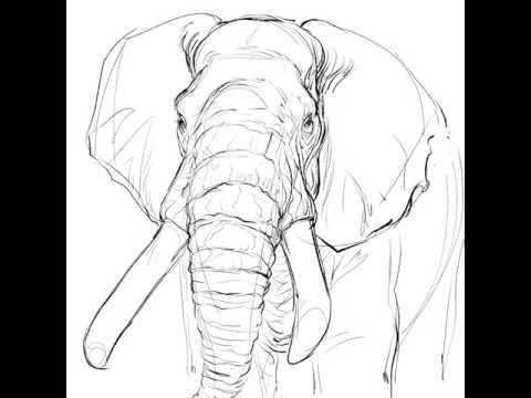 Wild Art Wednesday: African Elephants