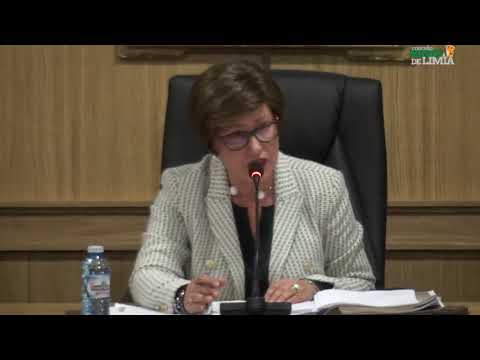 Pleno ordinario 08.08.2019