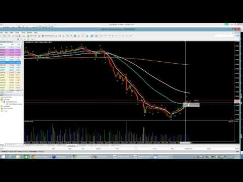 Phoenix Live Trading Room for Forex 12/8/14