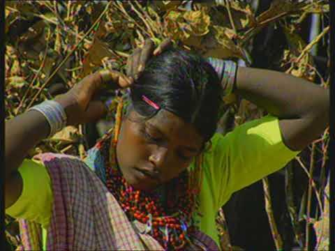 Baiga Tribe - A Documentary Movie