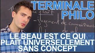 « Le beau est ce qui plait universellement sans concept », Kant - Philosophie - Les Bons Profs
