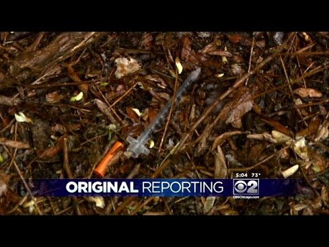 Park District Crews Working To Remove Needles From Douglas Park