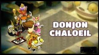 [DOFUS] CHALOEIL PUSILLANIME A 5 TEAM 198 ( ENU,PANDA,ELIO,ENI,IOP) {face&handcame}