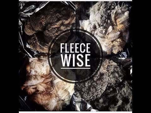 Fleece~Wise