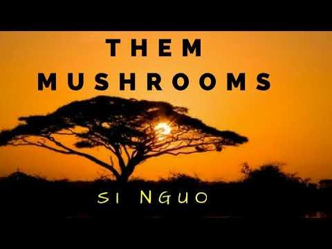 Them Mushrooms -  Mtoto Si Nguo