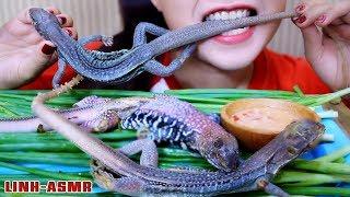 ASMR STEAMED SAND IGUANA (EXOTIC FOOD eating sounds)|LINH-ASMR