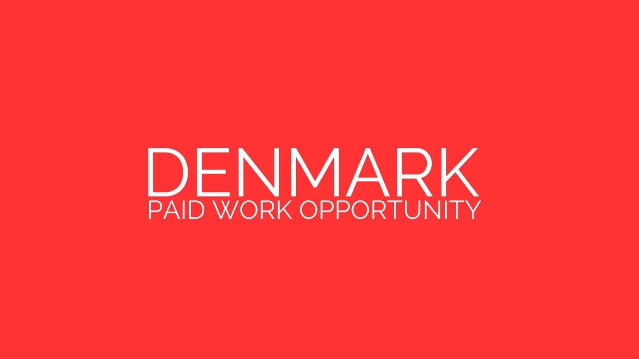 Denmark | Paid Work Opportunity