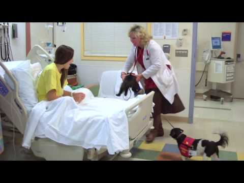 Healing Paws - Pet Therapy at Atlantic Health System