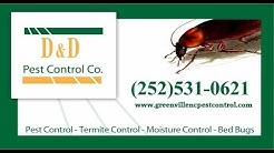 Bed Bug Treatment - Greenville, NC 27858
