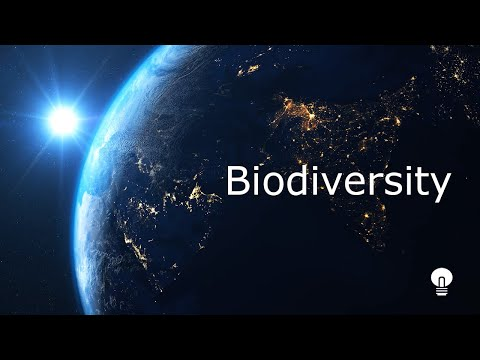 🌎Your Health and Reduce the Biodiversity issue - Best Motivational Video