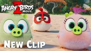 The Angry Birds Movie 2 - Clip: Hatchling Eggs