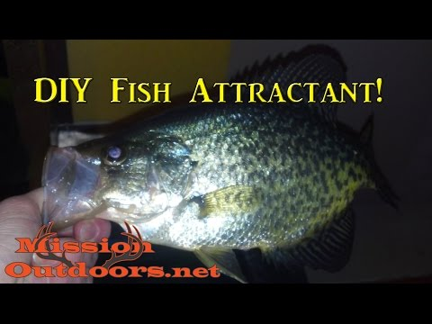 DIY Fish Attractant! - MissionOutdoors.Net