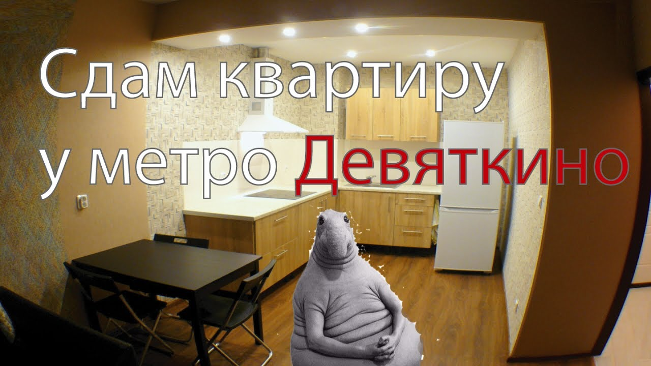 79d7c1f5f1619 Сдам квартиру у метро Девяткино - 800 метров, ЕвроДвушка ! Санкт-Петербург  Охтинская аллея 14
