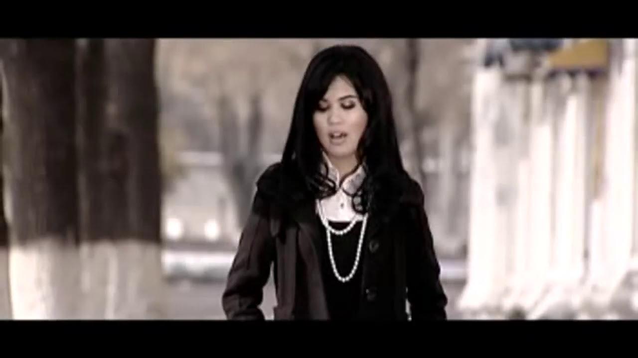 Setora Guruhi