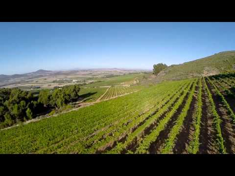 Fairview Wine - Drone view of estate & farm