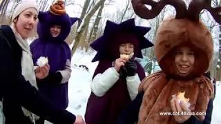 1 часть, #Winterdogfest Winter dog fest 2019, Харьков, Лесопарк, 02022019, собаки